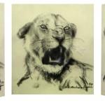 Aggressive Löwin [Kopf], 2009, Mischtechnik (Druck), 29 x 21 cm